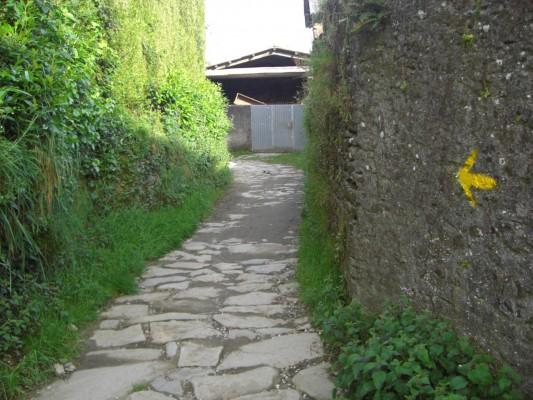 Camino Arzua-Santiago de Compostela 09
